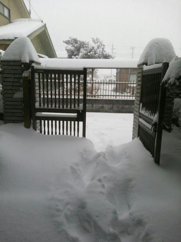 記録的な大雪〓